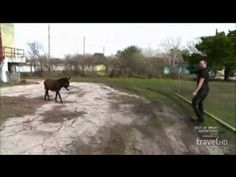 Ghost Adventures - Zak And The Burro