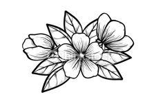 Sakura Tree Drawing Black And White Trendy Ideas Simple Flower Drawing, Simple Flowers, Flower Art, Art Flowers, Flower Tattoo Designs, Flower Tattoos, White Flowering Trees, Tattoo Fleur, Lace Tattoo