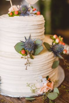 Textured two layered cake with succulents - so pretty!