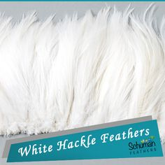 Rooster Saddle Feathers - Saddle Hackle to buy by the yard or bulk Feather Skirt, Exclusive Collection, Wedding Centerpieces, Feathers, Rooster, Highlights, Diy Crafts, Skirts, Stuff To Buy