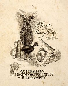 Artist: LINDSAY, Lionel | Title: Book plate: Henry L. White | Date: 1914 | Technique: etching, printed in black ink, from one plate | Copyright: Courtesy of the National Library of Australia