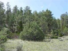Other, Stillwater County, Montana Land For Sale - 20 Acres