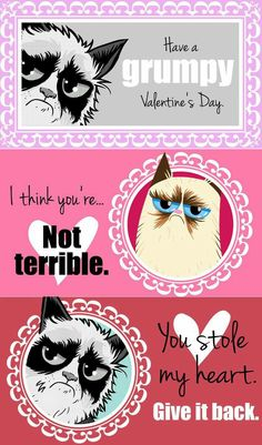grumpy cat valentines the ordinary pursuit grumpy cat valentines cat valentine and grumpy cat