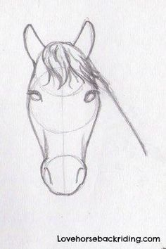 For horse pencil drawings, adding the shading to horse head is the last step. Create Sketches step by step - Beginner Horse drawings - Horse Back R… | Pinteres…
