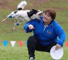 Revenge Of Frisbee Dog Picture
