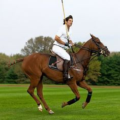 Nacho Figueras we know but I don't know the name of his horse