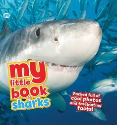 Cover image for My little book of sharks