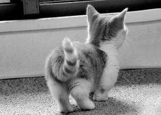 adorable. ♥