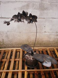 Stephen E. Douglas, a blacksmith / metal sculptor, incorporates traditional methods and a sense of elegance, style and grace into his ornamental art and armoring.