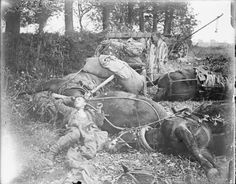 WW1: German ammunition limbers and teams caught by British shell fire. Le Quesnoy, 27 October 1918. In the foreground the body of a German soldier lies amid the bodies of horses. In the background is the wrecked ammunition supply cart.