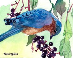 ACEO Limited Edition 5/25- Bluebird in wild berries
