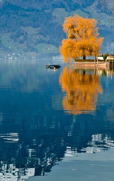 #Schweiz #Suisse #Switzerland #autumn