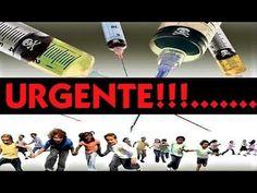 🔴 COMEÇOU A REDUÇÃO - ACORDA, BRASIL!!! LULA, TEMER, DILMA, FHC, ETC... ...