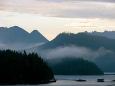 Pacific Rim Whale Festival celebrated in Tofino, Ucluelet and Pacific Rim National Park Reserve