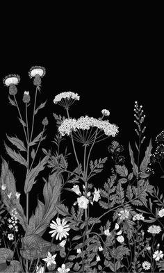 Black Illustrated Blooming Flowers Mural Wallpaper M9443 - Sample - Base