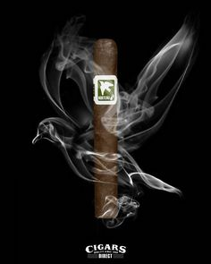 A best seller and one that'll give you wings to fly! The Drew Estate Norteno...on sale now at Cigars Direct!