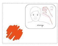 orange LSF illustration