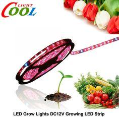 Led育てるライトdc12v赤青成長ledストリップ5050用温室水耕植物5メートル/ロット