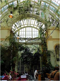 Lovely Palmenhaus restaurant at the old orangery in Burggarten. If the food was as stunning as the interiors, it would be pure heaven.