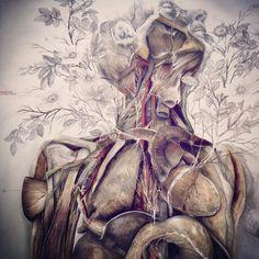 NUNZIO PACI Medical Illustration, Illustration Art, Nunzio Paci, Medical Art, A Level Art, Anatomy Art, Beginner Painting, Human Art, Art Themes
