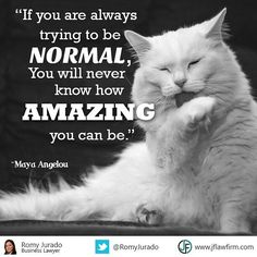 If you are always trying to be normal you will never know how amazing you can be. -Maya Angelou #pushthelimits  #beoptimistic  #businessattorney
