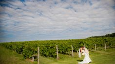 A Charlottesville Wedding at outdoor blog