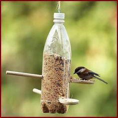 DIY Birdfeeder - soda bottle plus wooden spoons.