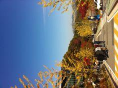2012-10-19 Chuncheon, Republic of Korea