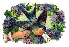 bird-love-note-image-flowers-crafting-design.jpg (JPEG-kuva, 1600×1102 kuvapistettä) - Pienennetty (59 % alkuperäisestä)
