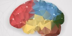 I'm a Neuroscientist. Here's How Teachers Change Kids' Brains. – EdSurge News I'm a Neuroscientist. Here's How Teachers Change Kids' Brains. Brain Based Learning, Learning A Second Language, Working Memory, Effective Teaching, Early Reading, English Language Learners, Childhood Education, Wow Products, How To Memorize Things