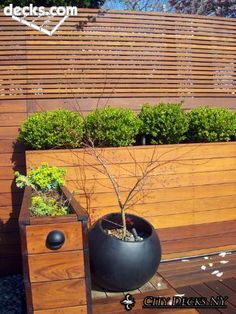 IPE Deck Fence Structure. Would accommodate our planters, but I like the strong horizontal lines. Spaced wood allows for air circulation.