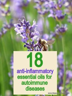 18 anti-inflammatory essential oils for autoimmune diseases #essentialoils #antiinflammatory    If you want to know which oils I use and trust, email me at tiffanieteel@gmail.com. Love, Your Oily FREE.K