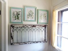 Aged Frames with Botanical Prints