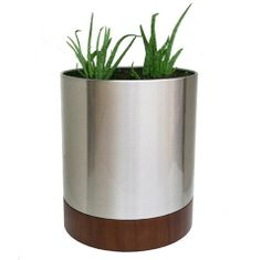 Knox Modern Cylinder with Wood Base – Sustainably Urban
