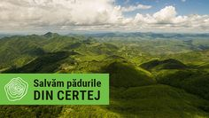 Salvăm pădurile din Certej! Environmental Research, Social Activities, Salvia, Golf Courses, Culture, Mountains, Travel, Knives, Viajes