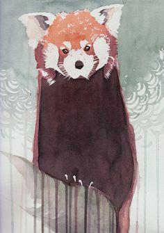 Oyo como va red panda? Art Print