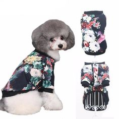 Hoping you'll love this... Colorful retro printed dog jacket for small dogs http://dogtrunk.com/products/hoopet-pet-dogs-clothes-colorful-printed-jacket-color-printing-leisure-fashion-sweater-warm-good-ventilation-retro-pattern?utm_campaign=crowdfire&utm_content=crowdfire&utm_medium=social&utm_source=pinterest