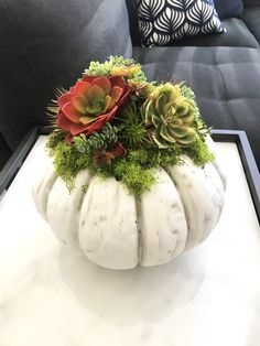 Thanksgiving Decorations, Halloween Decorations, Christmas Decorations, Table Decorations, Succulent Centerpieces, Succulent Arrangements, Faux Pumpkins, White Pumpkins, Pumpkin Colors