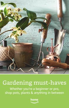 Gardening must-haves! Whether you're a beginner or a pro, shop plants & anything in between.