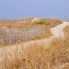 Fort Macon State Park, NC