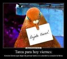 Imagen de http://img.desmotivaciones.es/201204/578237_276752999085426_216957608398299_582826_164277410_n.jpg.