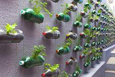 un mur végétal créé à l aide de bouteilles en plastique, plastique recyclée et transformée en de pots de fleurs, composition intéressante