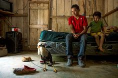 Alexis, 18, with his brother Wilson, 6, and their pet, a Caracara, at home in Omoa, Honduras. Photo: UNICEF/Adriana Zehbrauskas