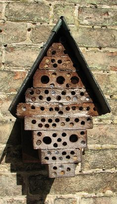 Bee house! That's cool but how would you find bricks like that??
