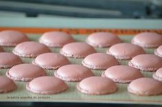 COMMENT REUSSIR SES MACARONS AU THERMOMIX LE PAS A PAS EN IMAGES Dessert Thermomix, Thermomix Bread, Macarons, Cookie Recipes, Dessert Recipes, Macaron Flavors, Fancy Desserts, Cooking Chef, Perfect Cookie