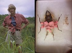 """dessicated beetle remains """"dressed"""" as characters from jurassic park are currently retailing for around $100.  get 'em while they're...  there! #merrychristmas"""