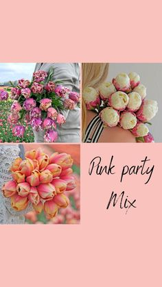 We have put together this nice pink mix of tulip bulbs. Plant them now and enjoy a garden full of flowers next spring! Special offer, limited edition. #tulips #gardendesign #planting Daffodil Bulbs, Bulb Flowers, Tulips Flowers, Daffodils, Spring Flowers, Planting Tulip Bulbs, Tulip Bulbs For Sale, Types Of Tulips, Spring Flowering Bulbs