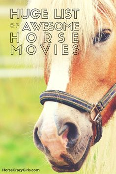 If you love horse movies like I do...here's a huge list of them!