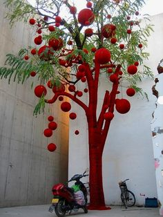yarned bombed tree in china