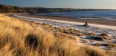 St. Cyrus beach and nature reserve, Scotland